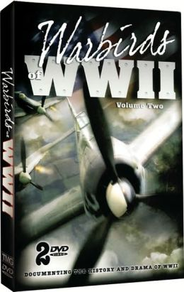 Warbirds Of Wwii 2 (2 Pack)