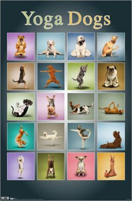 Yoga Dogs - Poster