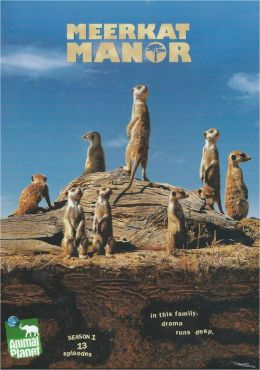 Meerkat Manor: Season One