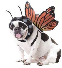 Butterfly Pet Costume: Small