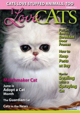 I Love Cats - One Year Subscription