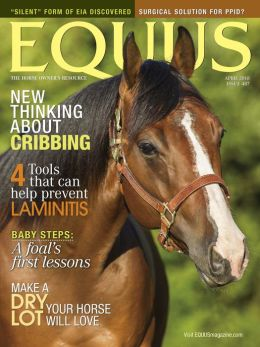Equus - One Year Subscription