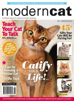 Modern Cat - One Year Subscription