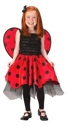 Lady Bug with Wings Toddler/Child Costume: Size Small (3T-4T)