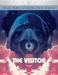Video/DVD. Title: The Visitor
