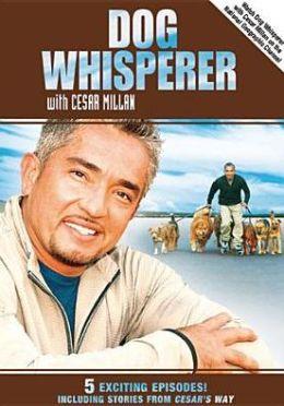 Dog Whisperer With Cesar Millan: Stories From