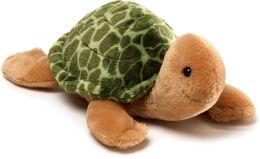 Slowpoke Turtle