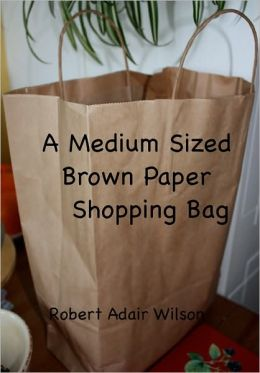A Medium Sized Brown Paper Shopping Bag