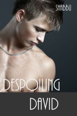 Despoiling David (A Gay Erotica / Historical Romance)