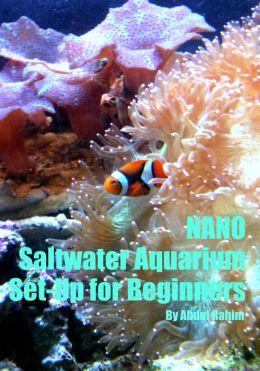 Nano Saltwater Aquarium Set Up for Beginners!