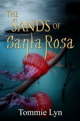 The Sands of Santa Rosa