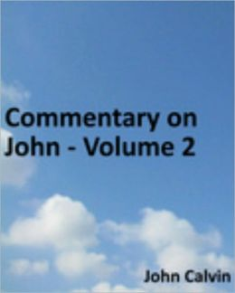 Commentary on John - Volume 1