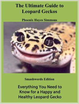 The Ultimate Guide To Leopard Geckos!