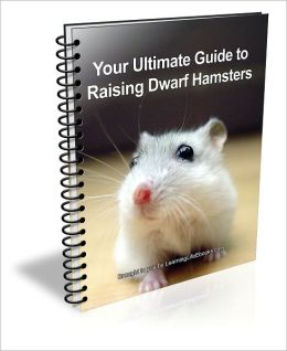 Your Ulitmate Guide to Raising Dwarf Hamsters