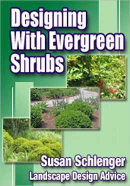 Designing With Evergreen Shrubs
