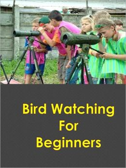 Bird Watching For Beginners