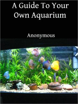 A Guide To Your Own Aquarium
