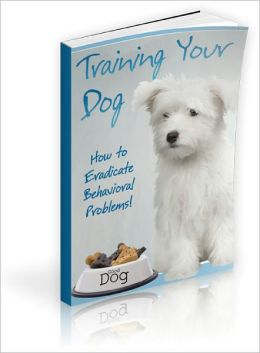 Training Your Dog