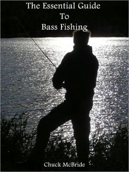 The Essential Guide To Bass Fishing