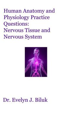 Human Anatomy and Physiology Practice Questions: Nervous Tissue and Nervous System