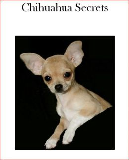 Chihuahua Secrets: How to Raise Happy and Healthy Chihuahuas