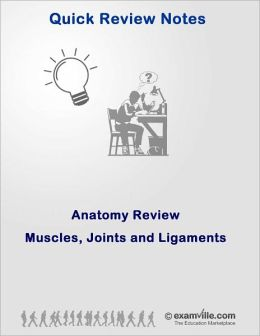 Anatomy Quick Review: Muscles, Joints and Ligaments