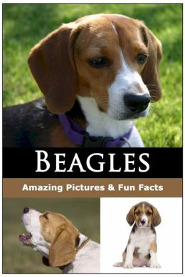 Beagle Guidebook (What You Need to Know to Take the Best Care Your Beagle)