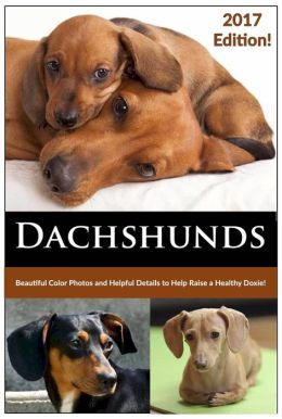 Dachshunds (How to Train, Groom, Feed and Care for your Doxie)