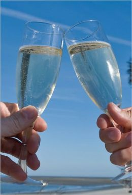 Giving a Wedding Toast - Yikes!!! Here's a Guide to Help