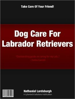 Dog Care For Labrador Retrievers