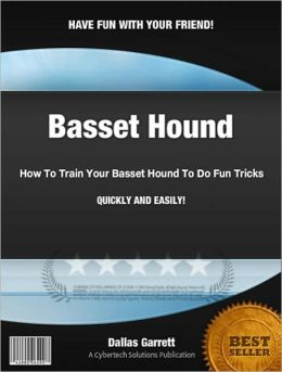 How To Train Your Basset Hound To Do Fun Tricks
