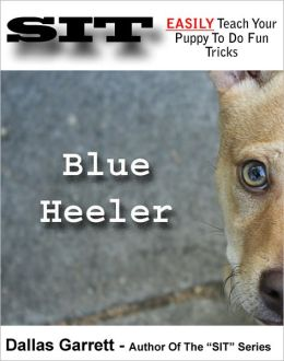 How To Train Your Blue Heeler To Do Fun Tricks