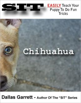 How To Train Your Chihuahua To Do Fun Tricks