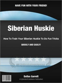How To Train Your Siberian Huskie To Do Fun Tricks