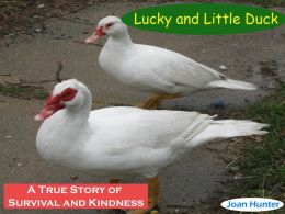 LUCKY AND LITTLE DUCK