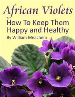 African Violets: How To Keep Them Happy and Healthy