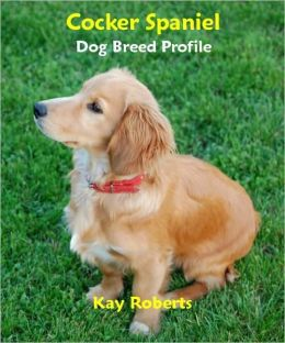 Cocker Spaniel Dog Breed Profile