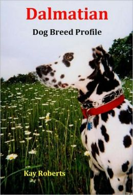 Dalmatian Dog Breed Profile