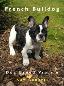 French Bulldog Dog Breed Profile