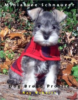 Miniature Schnauzer Dog Breed Profile