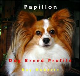 Papillon Dog Breed Profile