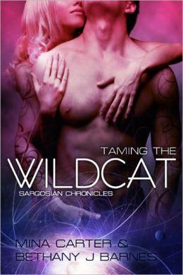 Taming the Wildcat