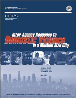 Inter-Agency Response to Domestic Violence in a Medium Sized City