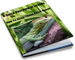 A Quick Overview of Lizards-How To Keep Them-Feed Them