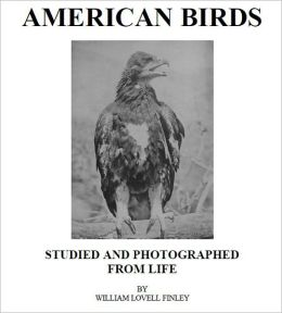 American Birds [Illustrated]