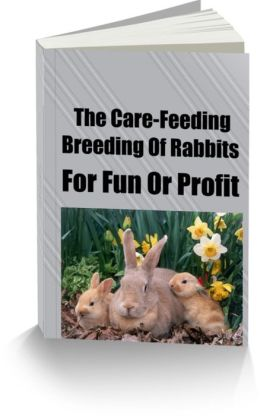 The Care-Feeding-Breeding Of Rabbits-For Fun Or Profit