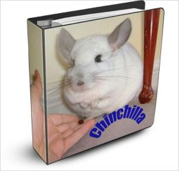 Chinchilla: Discover How To Own and Care For a Pet Chinchilla