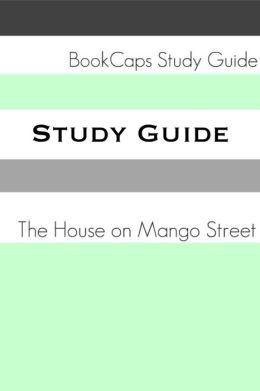 House On Mango Street Project Map