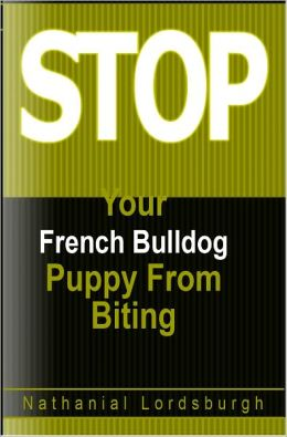 Keep Your French Bulldog From Biting
