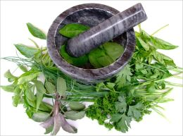 Herbal Recipes: 21 edible plants for a healthy lifestyle